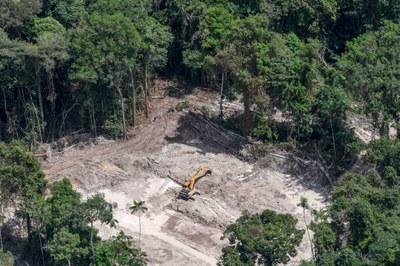 Maquinário de garimpo causa destruição dentro do território Munduruku. Foto: Ascom/PRPA