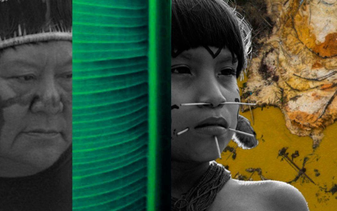 Uma luta de resistência centenária: Garimpeiros invadem território Yanomami e atiram contra indígenas